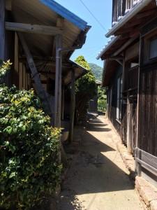 yakisugi