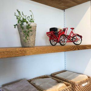飾り棚には自転車のミニチュアと少し伸び出したグリーン。