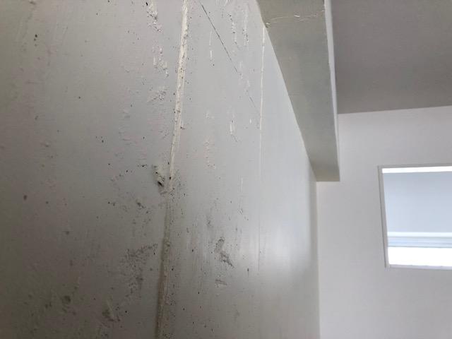 コンクリート直にペンキはセルフリノベ。ラフな仕上がりはセルフならではです。