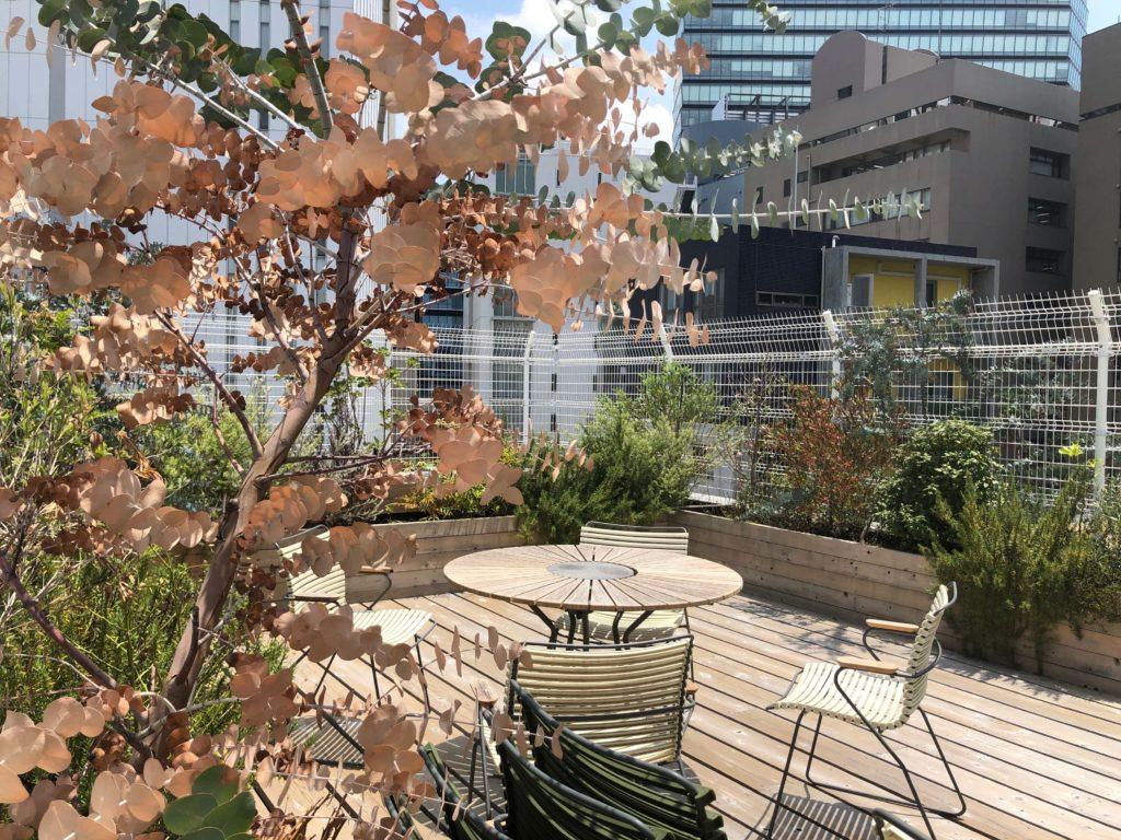ホテルの最上階はウッドデッキと植物が出迎えてくれ、野外パーティとか捗りそうです。