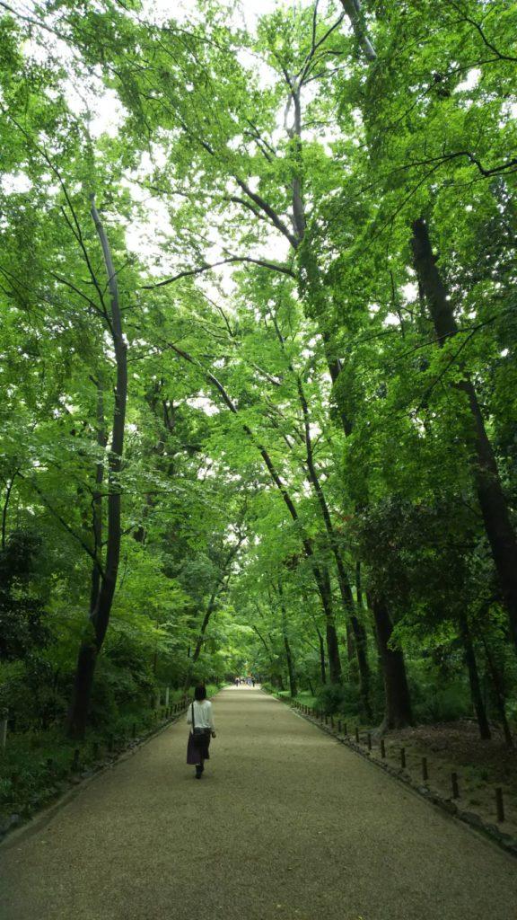京都、糺の森でリノベーションと空間について考えました