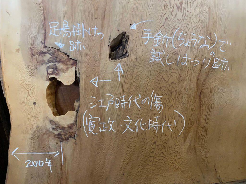 江戸時代に加工され、その後も成長を続けた屋久杉